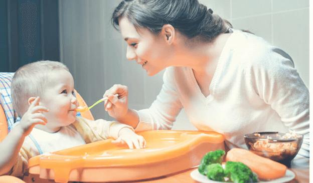 instituto villamil alimentação responsiva